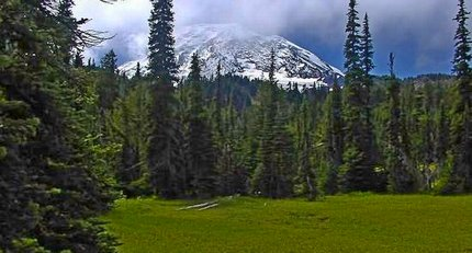 Mt Adams as seen from Foggy Flats in the Mt Adams Wilderness Area