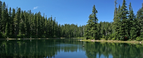 Bear Lake in the Indian Heaven Wilderness