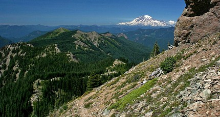 Mt Rainier as seen from the Sunrise Peak trail in the Gifford Pinchot National Forest