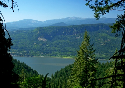 Looking north across the Columbia River Gorge from a viewpoint along the Devils Rest trail
