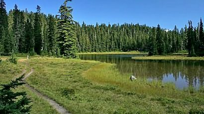Junction Lake in Indian Heaven