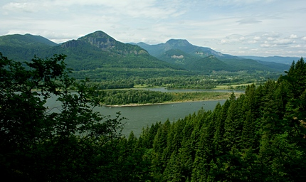 Looking northeast up the Columbia River Gorge from the McCord Creek Falls trail