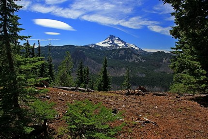 View of Mt Jefferson from Ruddy Hill